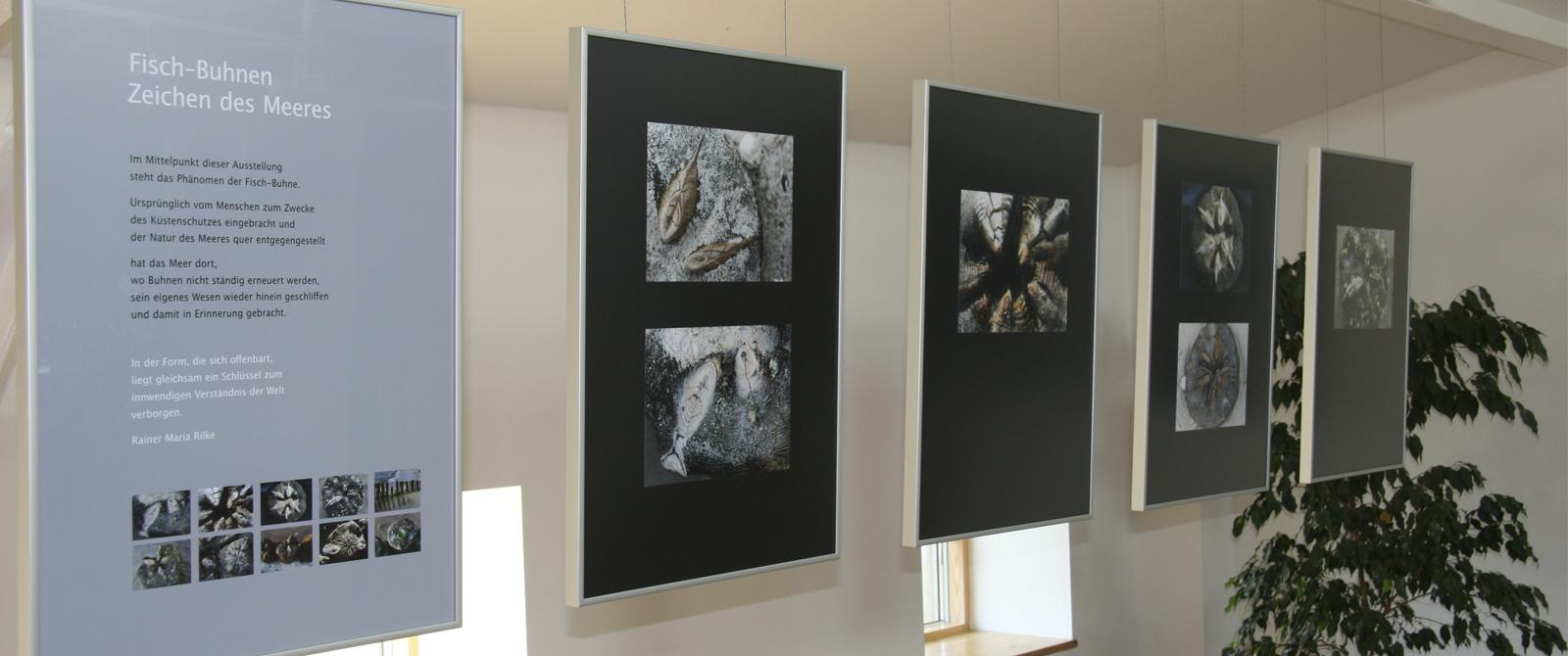 AusstellungKopf